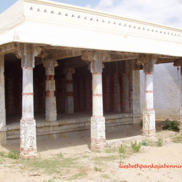The Eclipse Pavilions of South India