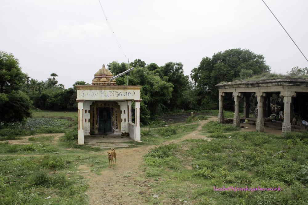 Eclipse pavilion and Varasiddho Vinayakar shrine at Mahabalipuram