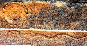 Senthamangalam Shiva temple: ceiling cobra with lotus medallion