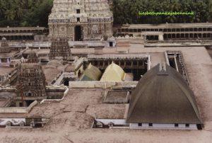 Shri Shiva Nataraja temple, Sabhanayaka, temple courtyards